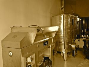 marseillefaitmaison-marseille-fait maison-vin-microcosmos-vignes-chai-vin parcellaire-vinification-provence-roussillon-erafleuse