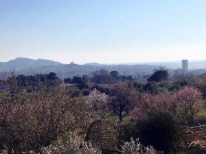 marseillefaitmaison-terre de mars-marseille-provence-agriculture-produits locaux-urbanisme-bio